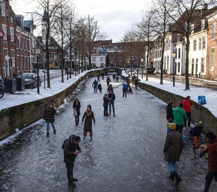 Havik met ijs 14 feb 21.jpg
